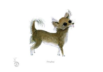 Fun Dog Cartoon Print - Chihuahua
